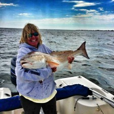Shell with a 41 inch Bull Red