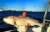 MONSTER BULL REDS – 47 and 50 incher in the same day