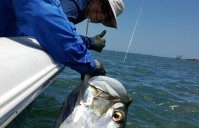 FISH OF A LIFE TIME – Anna's first Tarpon