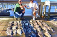 NOVEMBER MDK – Sheepshead and Trout 11-11-15