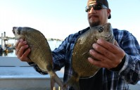 CORKIN FOR PORGIES – Inlet variety including, Black Drum, Reds and Sheepshead