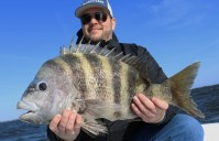GOING BIG IN 30 KNOT WIND – 10.5 pound Sheepshead, 27″ Trout x2 and much more….