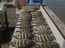 FALL SHEEPSHEAD MADNESS – Sheepshead, Flounder, Trout, Reds, Ring Tails and Drum