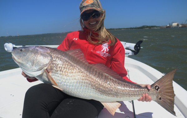 Inlet Bull Red and Shark Fishing