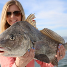 Perfect eating sized Black Drum