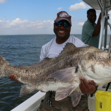 Monster Black Drum