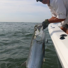Jason with a 60 pound Mayport Inlet Tarpon