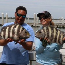 Two 9 pound Sheepshead