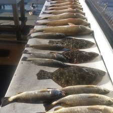 Here's what a vessel limit of Redfish looks like