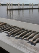 Fishing Slip Corks for Speckled Trout and Reds